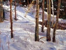 Sandia Snow